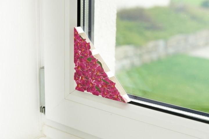 Fenster Fliegenfalle am Fenster Design 3