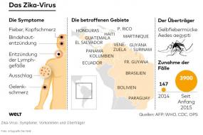 Der Zika- und Dengue-Virus breitet sich in Lateinamerika aus