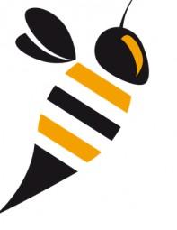Was genau sind Insekten?